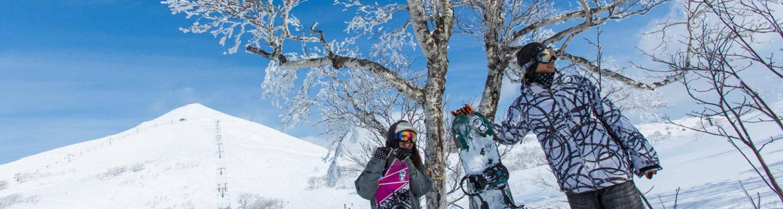 Niseko snowboarders